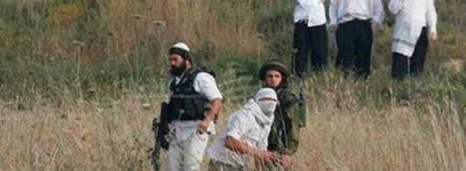 Yahudiler Madma beldesinde tarım arazilerini tahrip etti