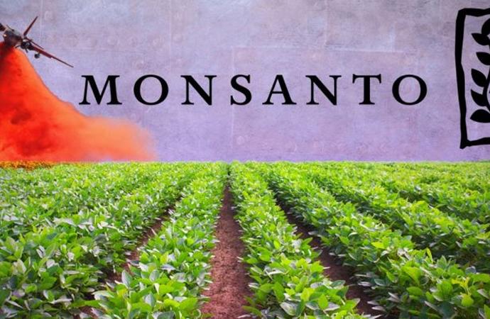 Tarım ilacı şirketi Monsanto'ya çiftçilerden dava