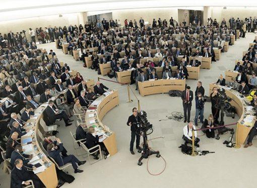Birleşmiş Milletler İnsan Hakları Konseyinde, sonuçsuz tasarılar
