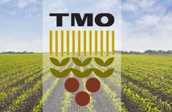 Türkiye 300 bin ton mısır, 30 bin ton pirinç ithal edecek