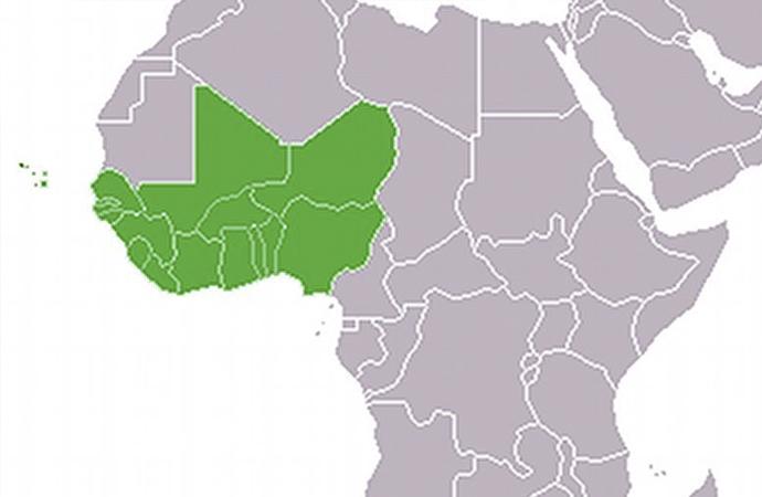 Batı Afrika ülkelerinde ortak para birimi anlaşması