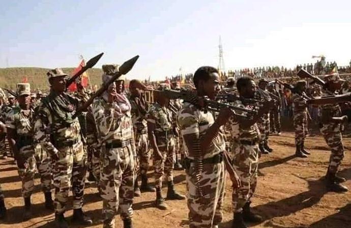 Etiyopya 'içişlerimize karışmayın' dedi