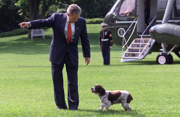 Bekir Hazar, Amerika'nın 'Köpek sevdası'nı yazdı