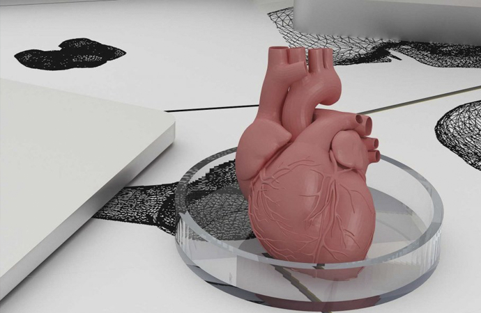 Transplant hekimlerin en büyük hayali: Yapay organ