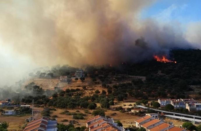 Orman yangınlarının yüzde 80'i insan kaynaklı