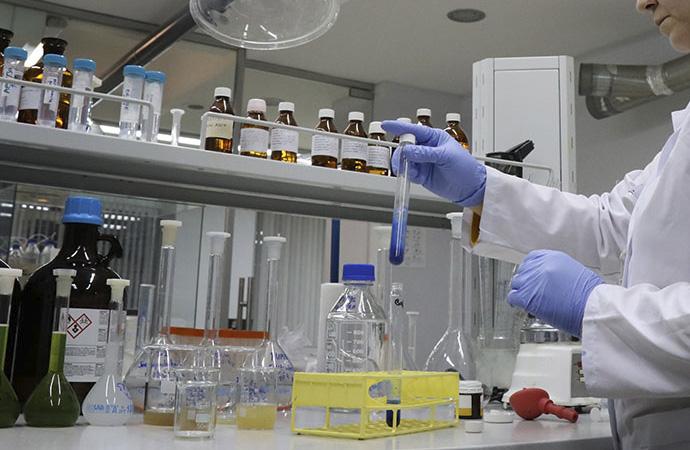 Balın sahte olduğu ancak laboratuvarda anlaşılabilir