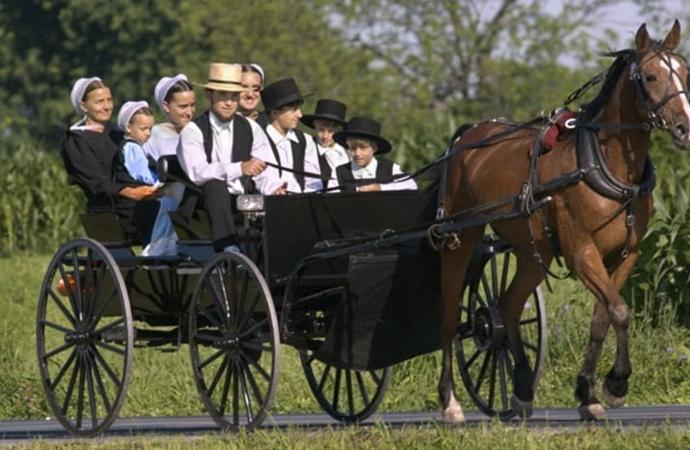 Teknolojiden uzak yaşayan Amişler broşürlerle uyarılıyor