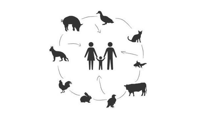 'Tüm zoonotik hastalıkların sorumluluğu insana ait'