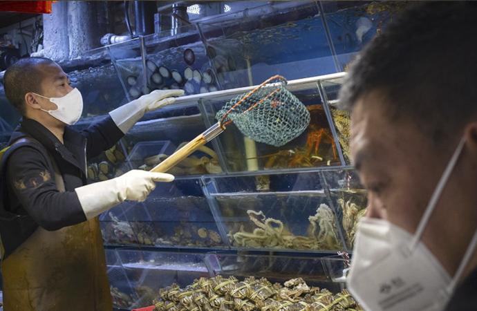 Dünya Sağlık Örgütü: Salgının çıkışında Vuhan'daki hayvan pazarı rol oynadı