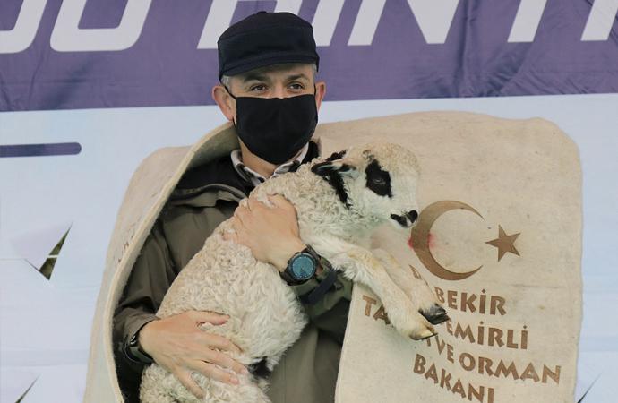 Türkiye tarımsal hasılada Avrupa'da birinci, dünyada ise ilk 10 içinde