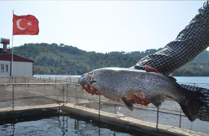 Denizi olmayan şehirden 25 milyon dolarlık balık ihracatı