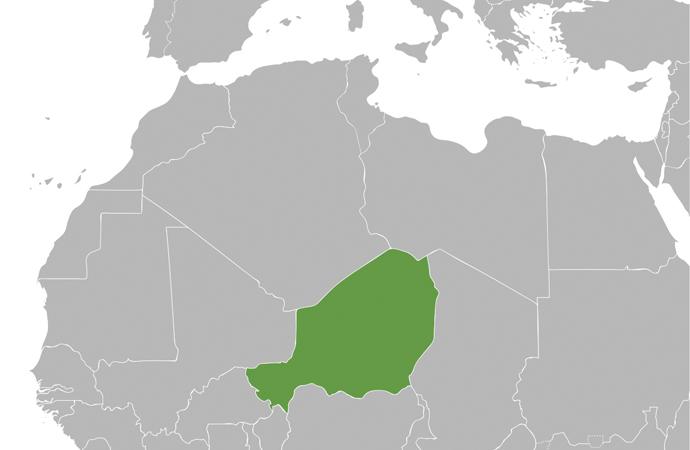 Nijer'de 6 Fransız turist ve 2 rehber öldürüldü