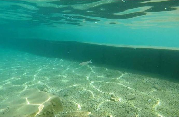 Muğla'da deniz tabanına yapılan beton duvar