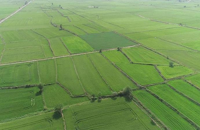 Tarım ve ormancılığın 10 yılı masaya yatırılacak