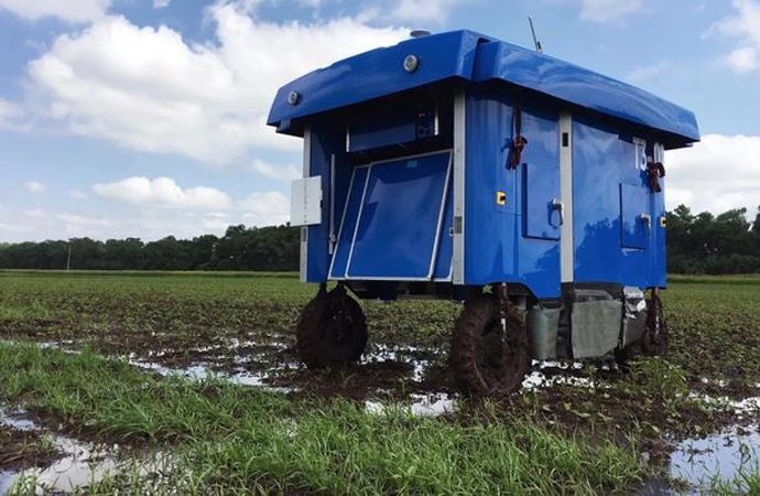 Google'ın robotları ürünü inceleyip çiftçiye bilgi verecek