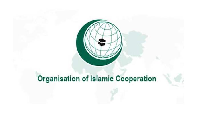Teşkilat, 'Keşmir' meselesine desteğini yineledi