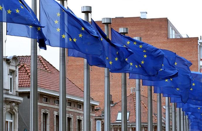 Avrupa Birliği 29. yılına ciddi sorunlarla girdi