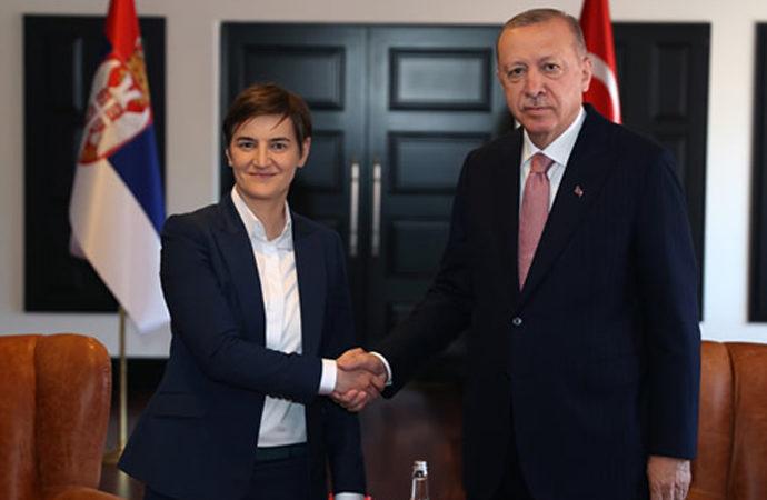 Erdoğan, Sırbistan ve Hırvatistan Başbakanlarını kabul etti