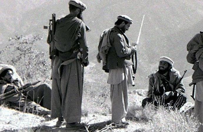 'Taliban'ın başarısı Afgan cihadının ve Afgan yerel dinamiklerinin bir sonucudur'