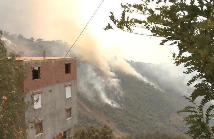 Cezayir'deki yangınlarda sabotaj şüphesi