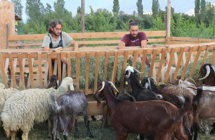 İki kardeş 6 dönümlük bahçelerinde çiftçiliğe başladı