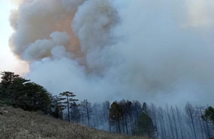 5 ilde 13 orman yangını devam ediyor