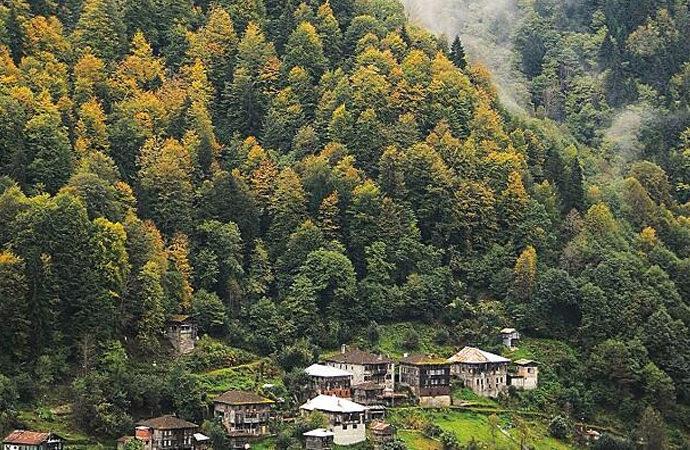 'Türkiye'de ormanların yüzde 54'ü yangına hassas alanlardan oluşuyor'