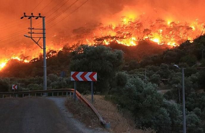 Pakdemirli: Şu an devam eden 8 yangın var