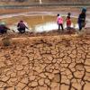 'Her 10 yılda bir yaşanan kuraklıklar artık 5-6 yılda bir olacak'