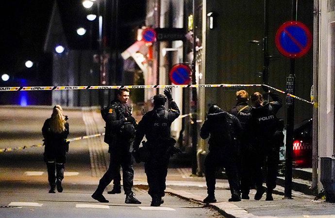 Danimarkalı saldırgan Norveç'te 5 kişiyi katletti